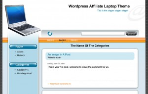 Wordpress Affiliate Niche Store Laptop Theme