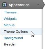 2011-wp-theme-options