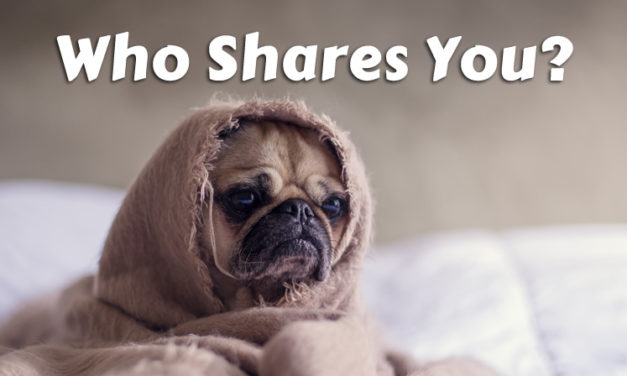 Who Shares Your Blog Posts?